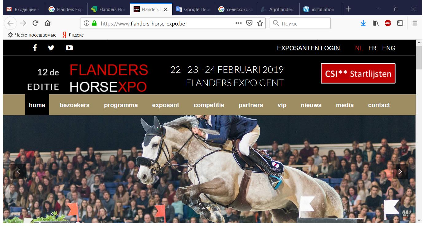 Flanders Horse Expo 2019 - Vlaanderens grootste beurs voor ruiter, menner, fokker en paardenliefhebber - Mozilla Firefox
